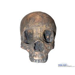 Superman Man of Steel screen used actual Human prop  Skull used is Supeman burial scene