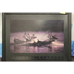 """NATURAL WONDERS"" WOOD FRAMED PICTURE"