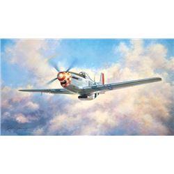 Mustang John Young North American P-51