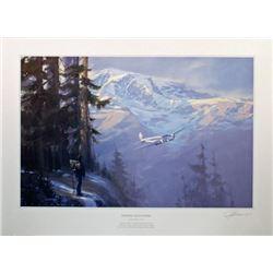 Aviation Art Rainier Encounter Fellows United 247