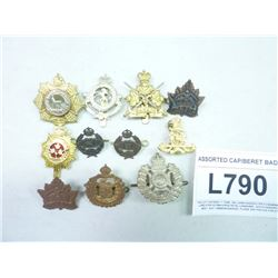 ASSORTED CAP/BERET BADGES