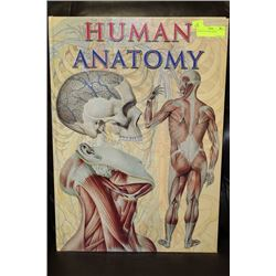 HUMAN ANATOMY BOOK