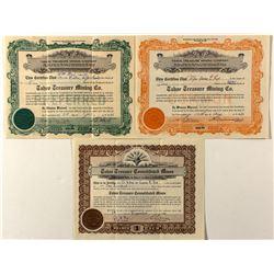Tahoe Treasure Mining Co. Stock Certificates (3)