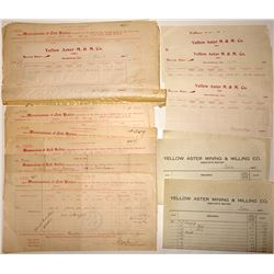 Yellow Aster Mining & Milling Co. Documents