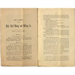 Ruby Chief Mining & Milling Company By-Laws