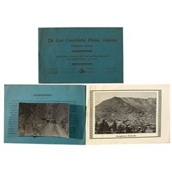 """The Linn Consolidated Mining Company"" prospectus"