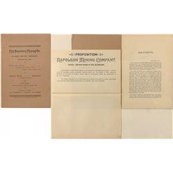 Napoleon Mining Co Prospectus
