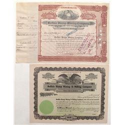 Buffalo Hump Mining Company Stock Certificate