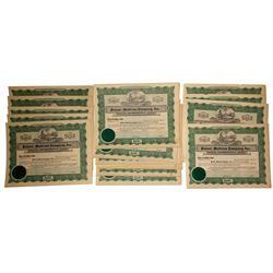 Palmer Mattress Company Stock Certificates: lot of 17