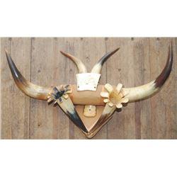 neat old steer horn rack