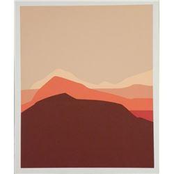 Doug Danz Signed Abstract Proof Print Canyon A
