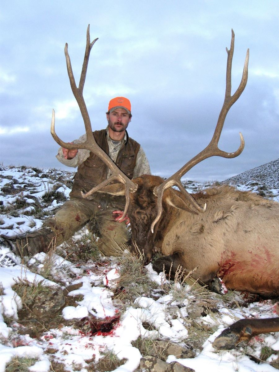 5-Day COLORADO ARCHERY ELK HUNT FOR 1 HUNTER - Semi Guided