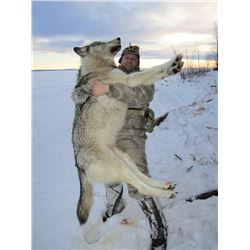 6-Day Wolf Trap-Line Hunt for Two Hunters in Alberta, Canada
