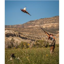 2-Day/3-Night Upland Bird Hunt for Two Hunters in Utah
