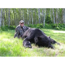 5-Day Black Bear Hunt for One Hunter in British Columbia - Includes Trophy Fee