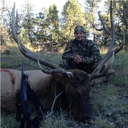 5-Day Bull Elk Hunt for One Hunter in New Mexico - Includes Trophy Fee and  Professional Filming