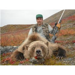10-Day Grizzly Bear Hunt for One Hunter in Arctic Alaska - Includes Trophy Fee