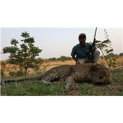14-Day Leopard and Cape Buffalo Hunt for One Hunter and One Non-Hunter in Zambia -  Includes Trophy