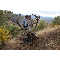 5-Day Anatolian Red Stag/Mid-Eastern Red Deer Hunt for One Hunter and One Non-Hunter in Turkey - Inc