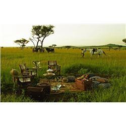 9-Day First Class Photo Safari in Tanzania For Two