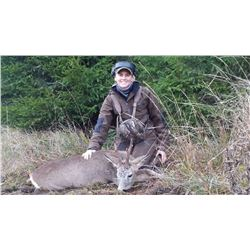 3-Day Roebuck Hunt for One Hunter and One Non-Hunter in South Sweden - Includes Trophy Fee