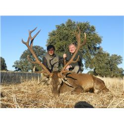 4-Day Red-Fallow-Roe Deer OR Mouflon Sheep Hunt (Hunter's Choice) for One Hunter In Spain - Includes