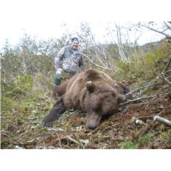 10-Day Coastal Brown Bear Hunt for One Hunter in Kodiak, Alaska