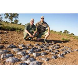 4-Day Wingshooting Adventure for Three Hunters in Argentina