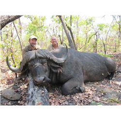 12-Day Cape Buffalo, Sable and Plains Game Hunt for One Hunter in Mozambique