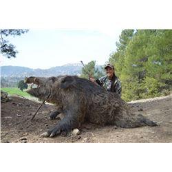7-Day Anatolian Wild Boar Hunt for One Hunter and One Non-Hunter in Turkey - Includes Trophy Fee