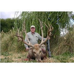 5-Day Père David's Deer Hunt for One Hunter in Argentina - Includes Trophy Fee