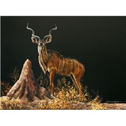 """Cautious Kudu"" - Original Scratchboard by Sally Maxwell"