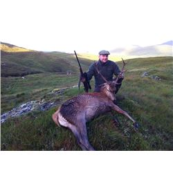 2-Day Stag Hunt for One Hunter and One Non-Hunter in Scotland - Includes Trophy Fee