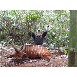 12-Day Bongo Hunt for One Hunter in Cameroon - Includes One Year Medical and Security Membership