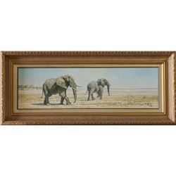 """Etosha Salt Pan Elephant"" Oil on Canvas by Tony Forrest"