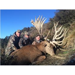 5-Day Red Stag Hunt for Two Hunters in New Zealand - Includes Trophy Fees and MORE!