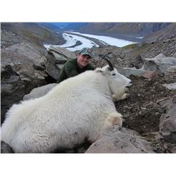 10-Day Mountain Goat and Black Bear Hunt for One Hunter in Alaska