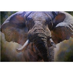 Close Up  - Original Elephant Painting By African Wildlife Artist Dawie Fourie