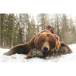 10-Day Brown Bear and Wolf Hunt for One Hunter in Alaska