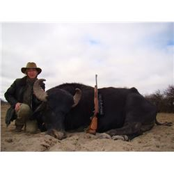 7-Day Hunt for Big Game and High Volume Dove for Four Hunters in Argentina - Includes Trophy Fees