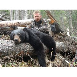 7-Day Black Bear Hunt for One Hunter in British Columbia, Canada