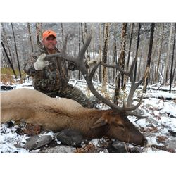 7-Day Elk Hunt for One Hunter in Wyoming - Includes Trophy Fee and Taxidermy