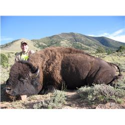2016 Utah Henry Mountain Bison Conservation Permit Hunter's Choice (early)