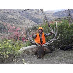2016 LaSal Multi Season Premium Bull Elk Conservation Permit