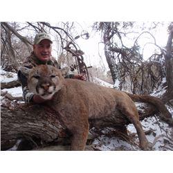 2016 Utah Statewide Cougar