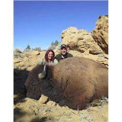 2016 Utah Statewide Bison Conservation Permit