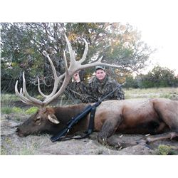 Zuni Reservation Bull Elk Hunt (1-hunter, 7-days/8-nights)