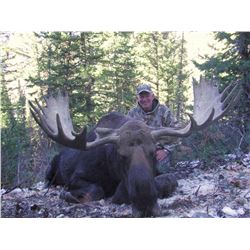 2016 Utah Statewide Moose Conservation Permit