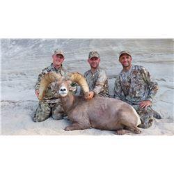 2016 Utah Statewide Desert Bighorn Sheep Conservation Permit