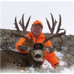 2016 Colorado Statewide Mule Deer Tag